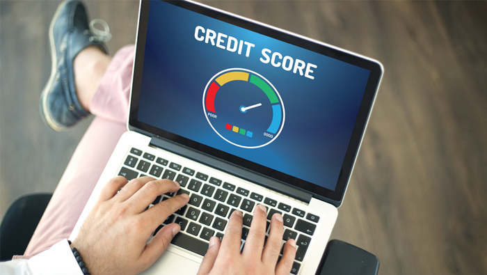 computer displaying credit score chart